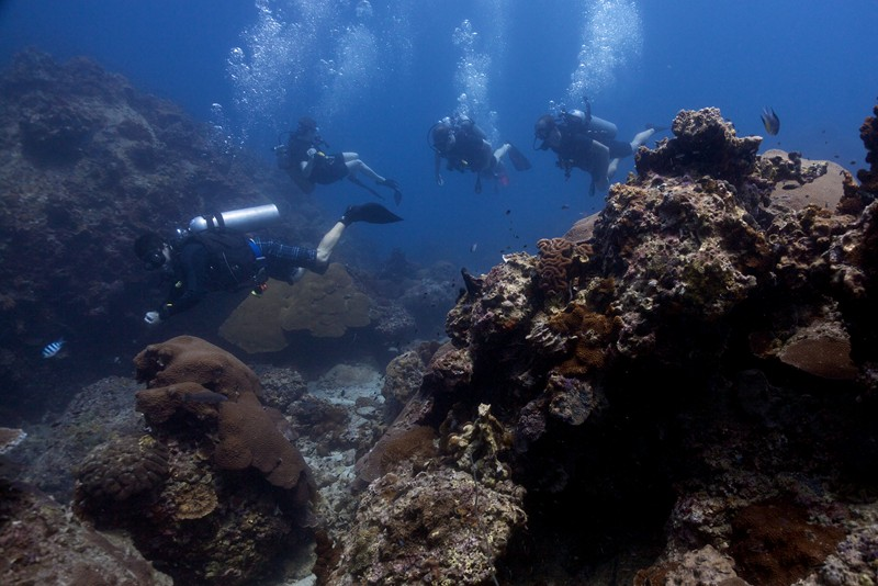 Top 5 snorkeling spots around koh tao sairee cottage diving koh tao thailand - Koh tao dive sites ...
