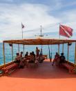 Dive Trip Koh Tao Thailand 13