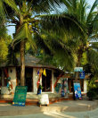 Dive Trip Koh Tao Thailand 4
