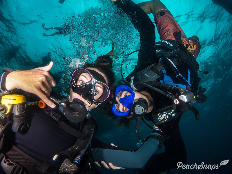 PADI Divemaster Course Koh Tao Scuba Diving