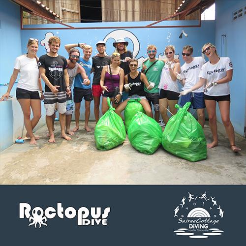 Roctopus Dive Sairee Cottage Diving Eco Day