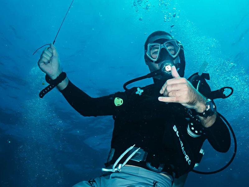 Top Dive Courses
