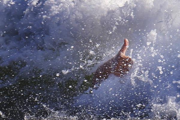 Free Dive Insurance