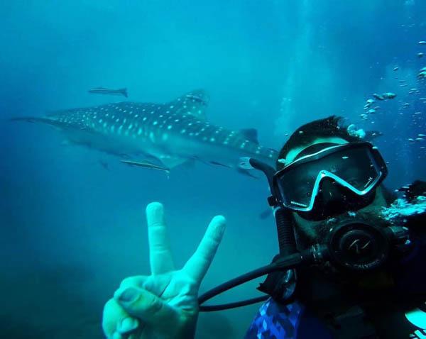 Whaleshark Selfie