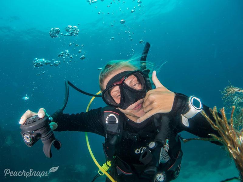 PADI Divemaster Course Koh Tao